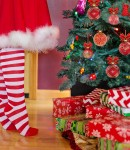decorating-christmas-tree-2999722_1280