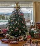 christmas-tree-1111031_1280
